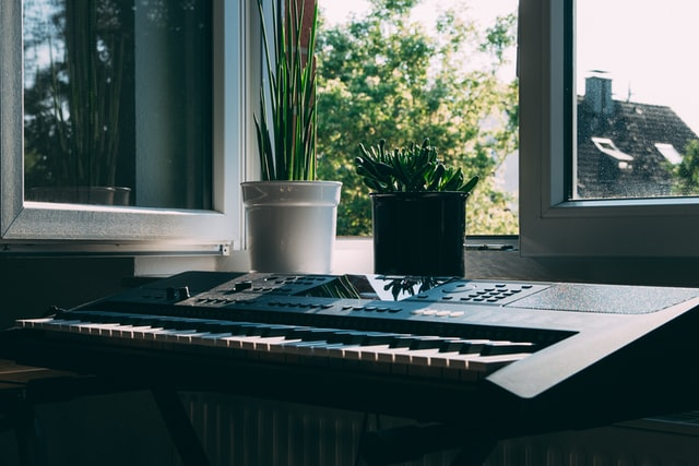 Keyboard and houseplants by window